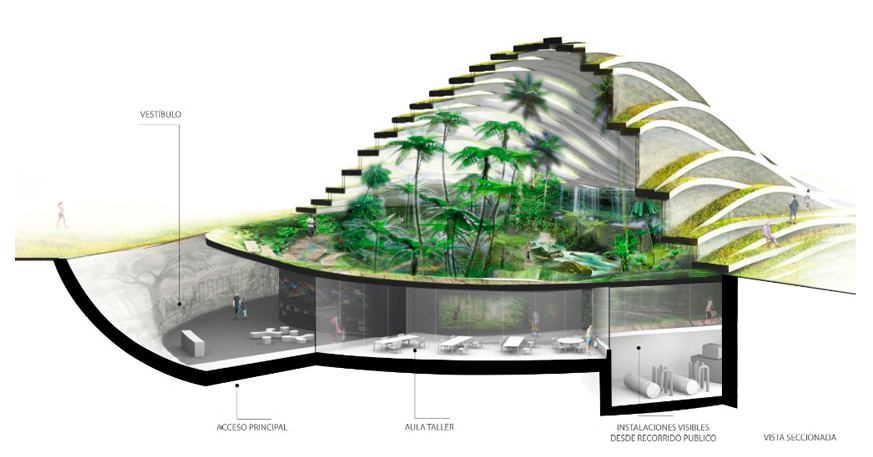 028-museo-bosque-conifero